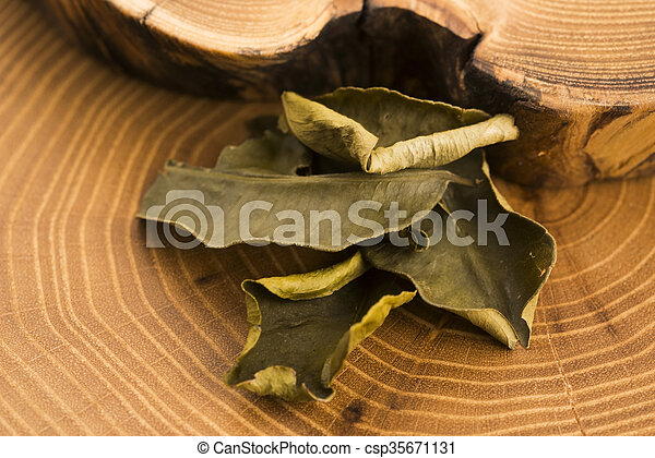 Cassia leaves - csp35671131