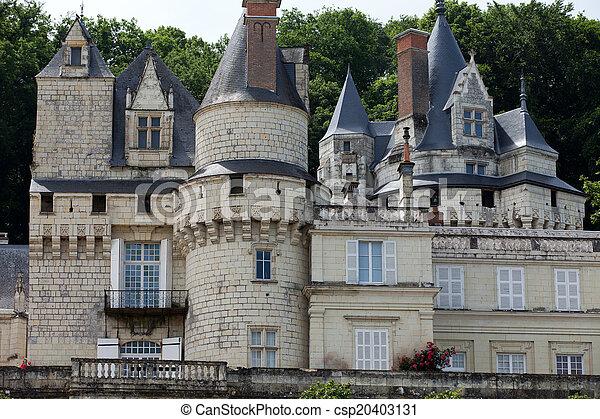 Castel of Rigny-Usse   - csp20403131