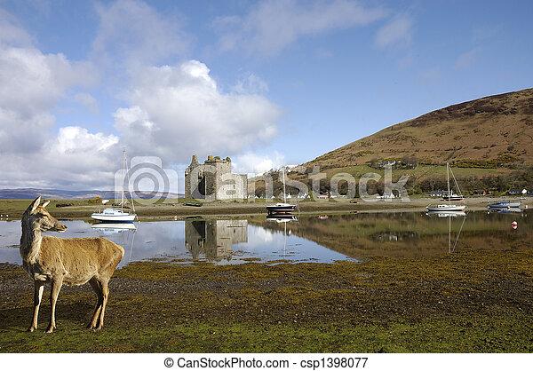 Castle at Lochranza in Scotland - csp1398077