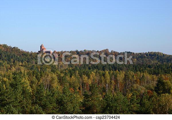castle far away among the trees - csp23704424