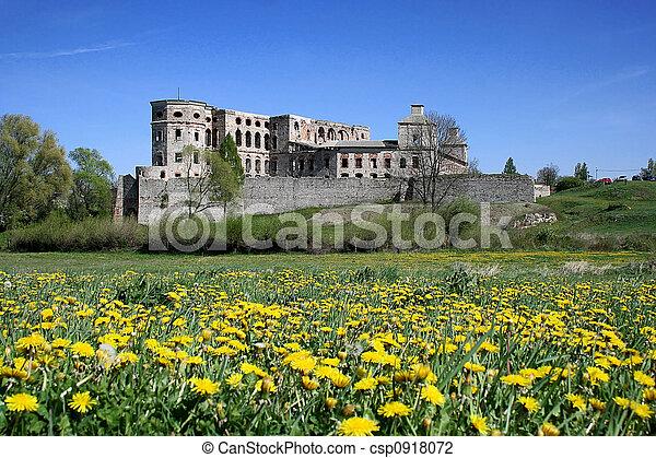 Castle Krzyztopor - csp0918072