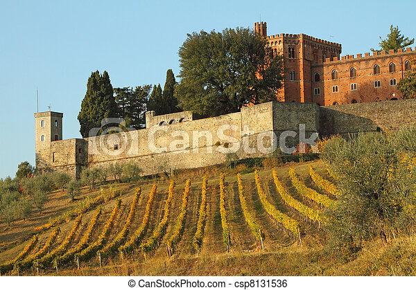 castle of Brolio and vineyards in Chianti, Tuscany, Italy, Europe - csp8131536