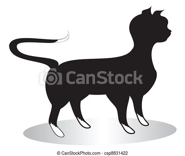 cat black  - csp8831422