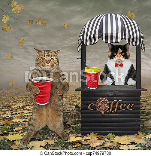 Cat buys coffee in park 2 - csp74979730