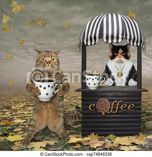 Cat buys coffee in park - csp74846336