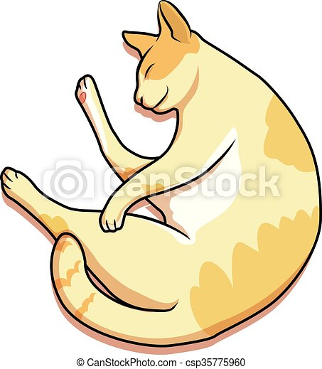 cat - csp35775960