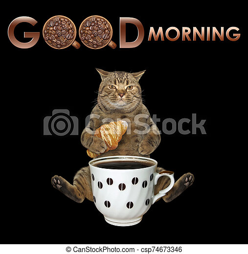 Cat drinks coffee with croissant 2 - csp74673346