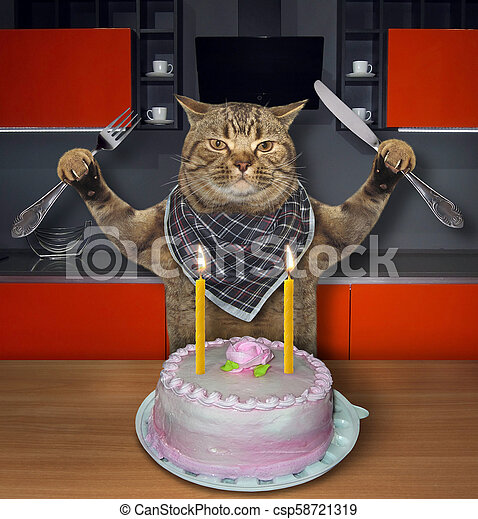 Brilliant Cat Eats The Birthday Cake 2 The Cat With A Knife And A Fork Eats Personalised Birthday Cards Paralily Jamesorg