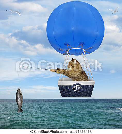 Cat fisher in a blue hot air balloon 2 - csp71816413