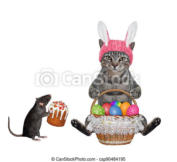 Cat gray with basket of colored eggs 2 - csp90484195