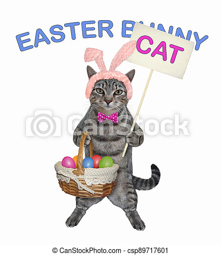 Cat gray with basket of easter eggs 2 - csp89717601