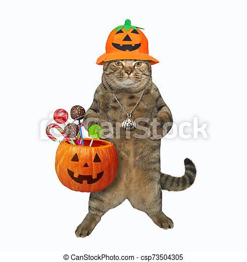 Cat holding pumpkin basket 2 - csp73504305