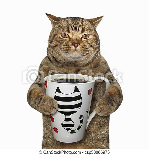 Cat holds a cup with coffee - csp58086975