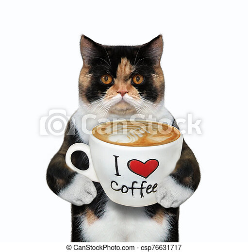 Cat holds cup of coffee with text 2 - csp76631717