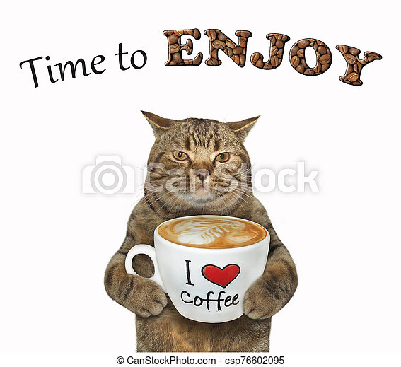 Cat holds cup of latte 2 - csp76602095