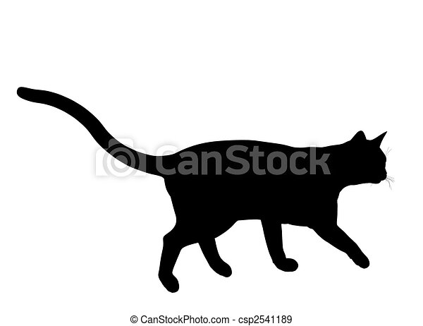 Cat Illustration Silhouette - csp2541189