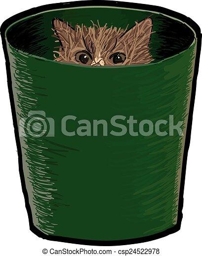 Cat in a Bin - csp24522978