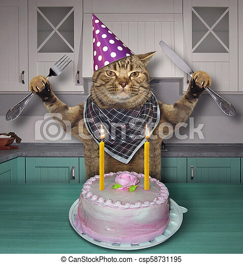Fantastic Cat In A Birthday Hat With The Cake The Cat In A Cone Hat With A Personalised Birthday Cards Paralily Jamesorg