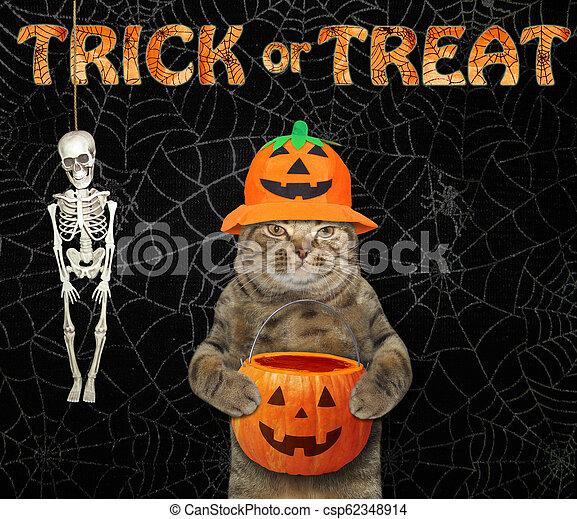 Cat in a hat with a pumpkin basket 2 - csp62348914