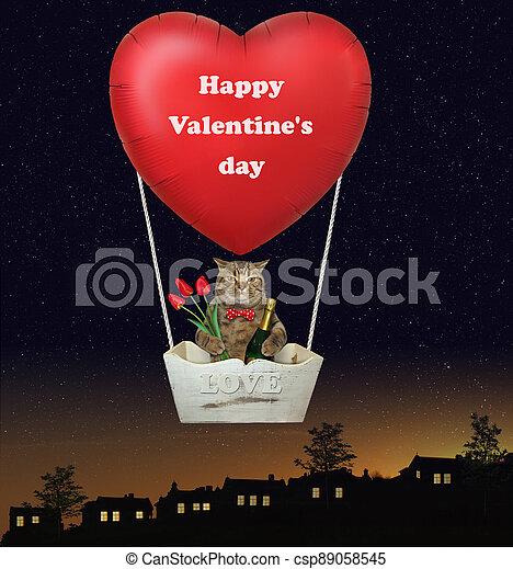 Cat in basket of hot air balloon 2 - csp89058545