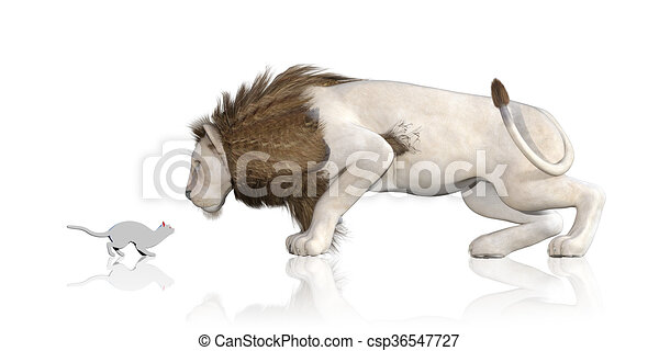 Line Art Lion : Cat lion reflection staring at each other clip art search