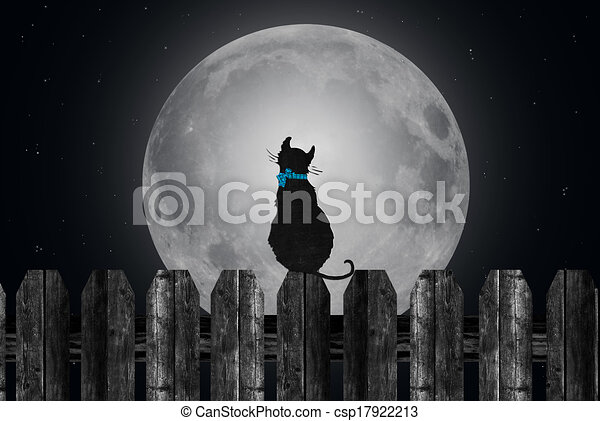Cat On Fence With Moon Silhouette Of A Cat On The Fence