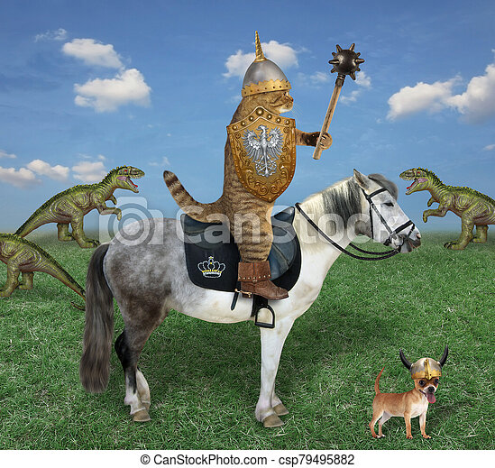 Cat on horse hunting for dinosaurs - csp79495882