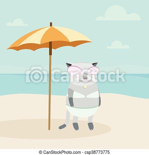 Cat on the Beach - csp38773775