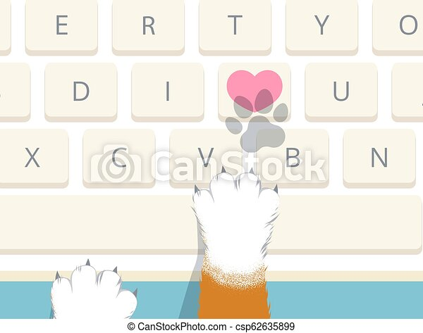 Cat pressed heart key on computer keyboard to send I love you - csp62635899