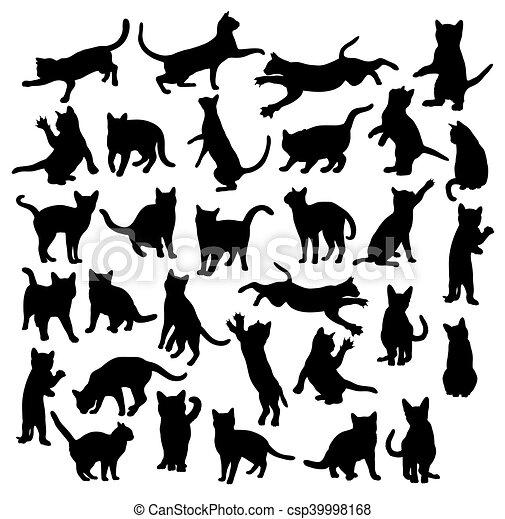 Cat Silhouettes - csp39998168