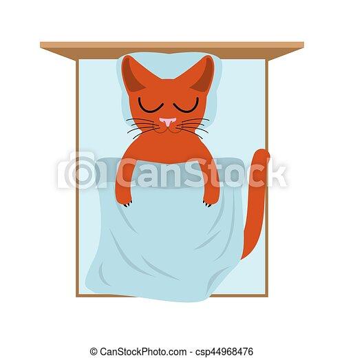Cat sleeps in bed. Pillow and blanket. Sleeping kitten - csp44968476