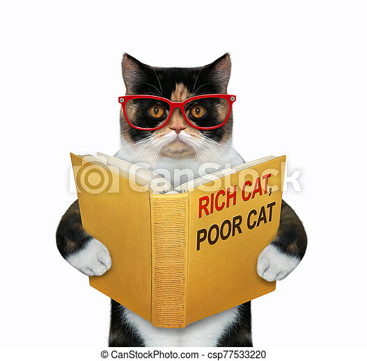 Cat wants to be rich 2 - csp77533220