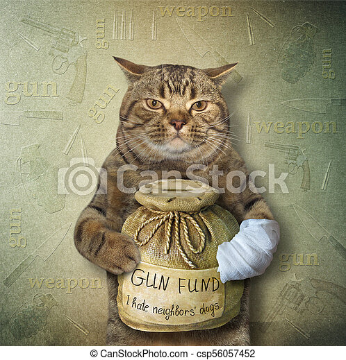 Cat with a money box for gun 2 - csp56057452