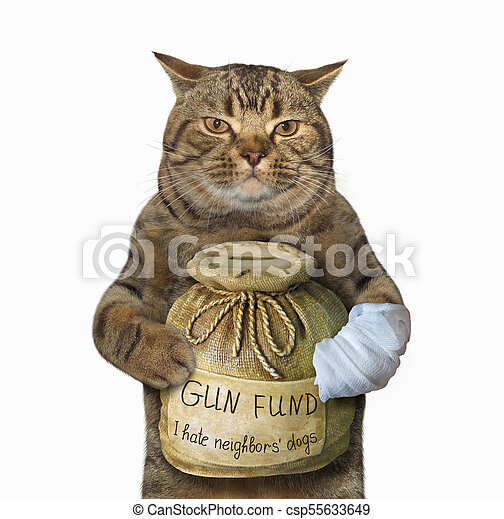 Cat with a money box for gun - csp55633649