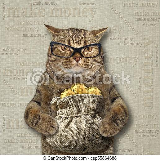 Cat with a sack of bitcoins 3 - csp55864688