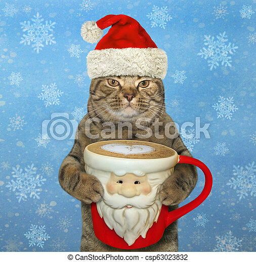 Cat with a Santa Claus cup of coffee 2 - csp63023832