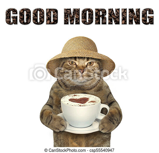 Cat with cup of coffee - csp55540947