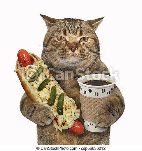 Cat with hotdog and black coffee - csp56636012