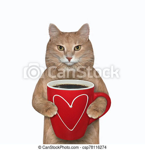 Cat with red cup of black coffee - csp78116274