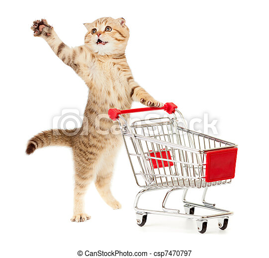 cat with shopping cart isolated on white - csp7470797