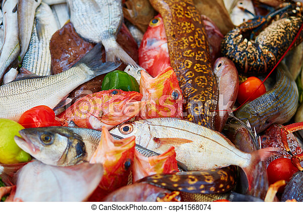 Catch of the day - csp41568074