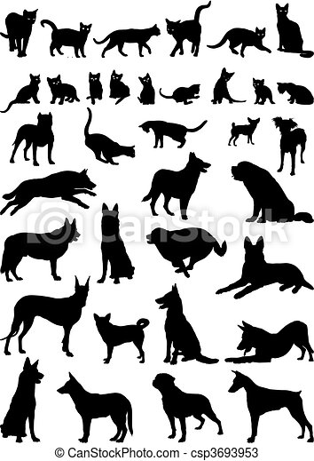 Cats and dogs - csp3693953