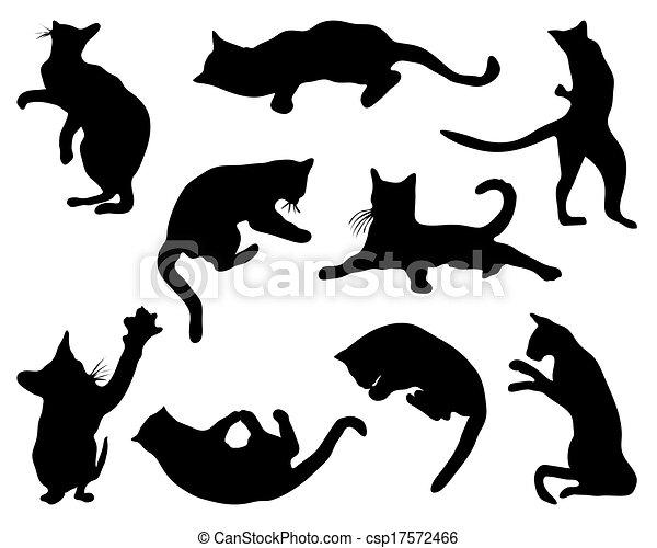 cats - csp17572466