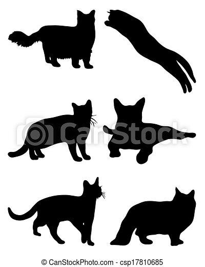cats - csp17810685