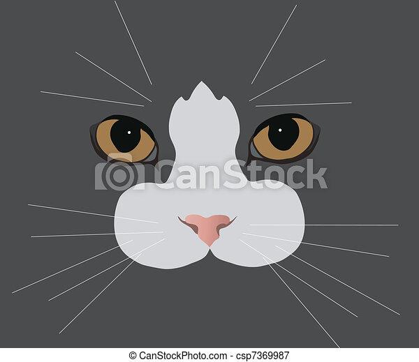 cat's-eyes - csp7369987