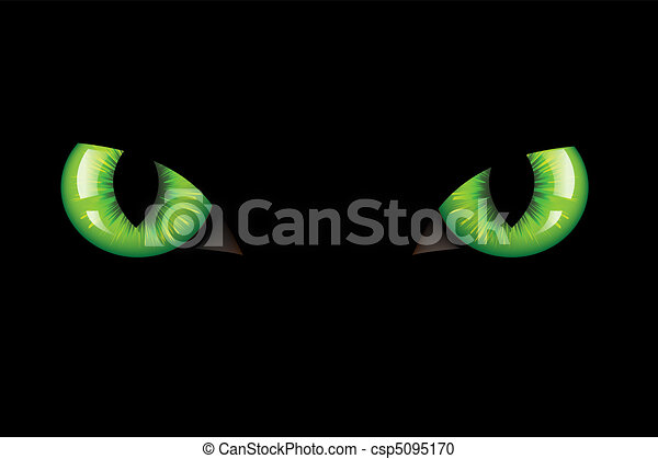 Cats Eyes - csp5095170