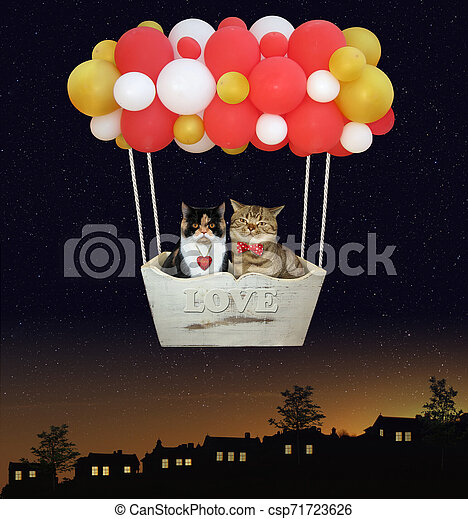 Cats in a color balloons 2 - csp71723626