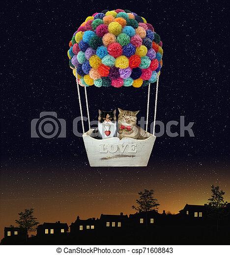 Cats in a hot air balloon 2 - csp71608843