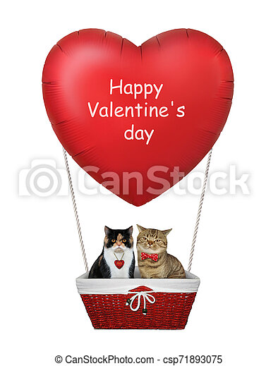 Cats in a red heart balloon 2 - csp71893075
