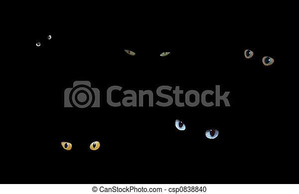 Cats in The Dark - csp0838840